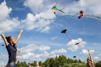kite-2173917_1280.jpg