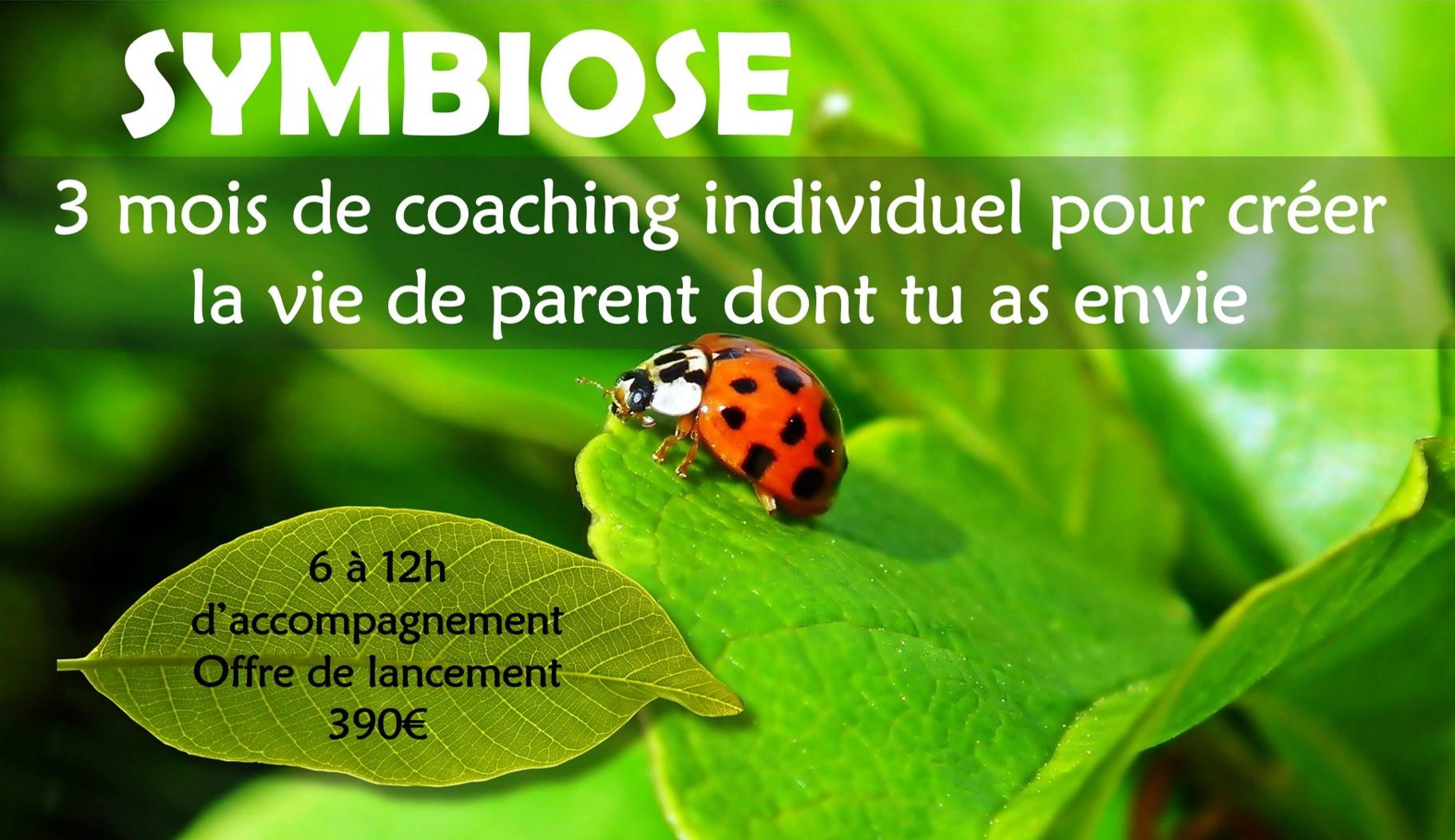 Symbiose11